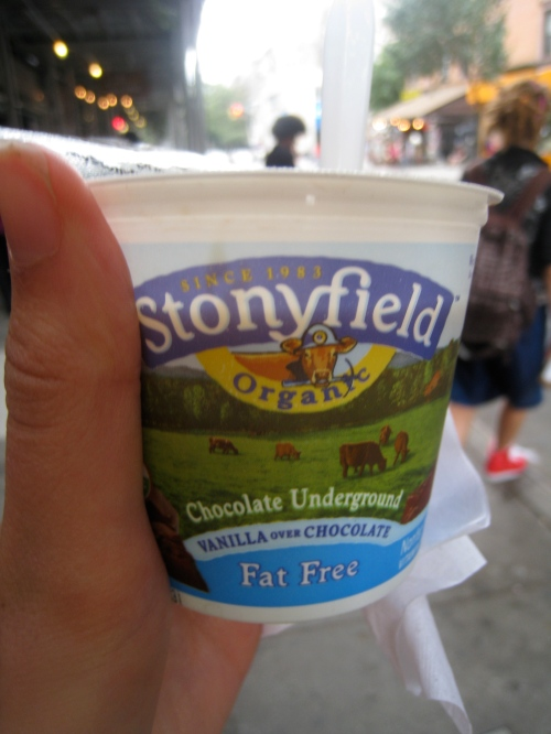 Stonyfield Chocolate Underground Yogurt