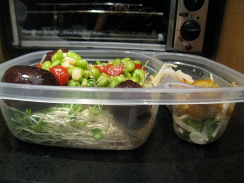 Leftovers Salad 2