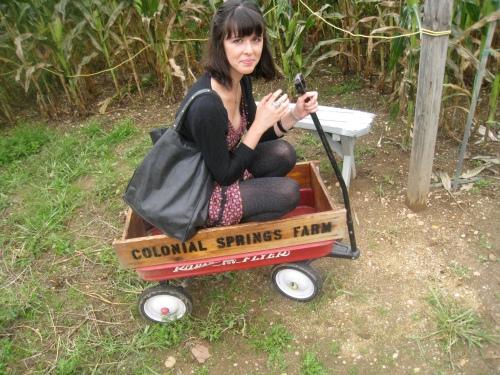 Wagon Fun
