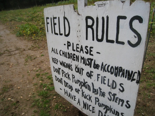 Pumpkin Picking Rules