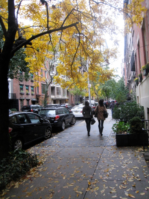 Wet New York Fall