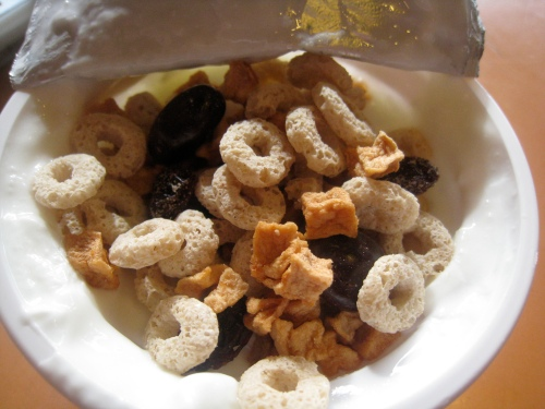 YouBar Chocolate Peanut Trail Mix in Greek Yogurt